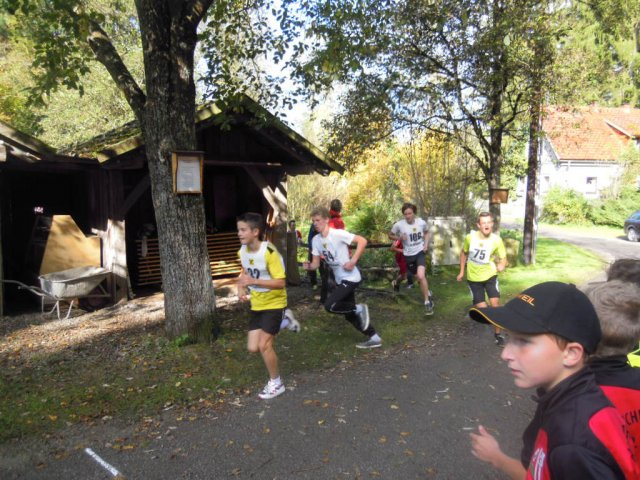 cross country bezirk_14_11